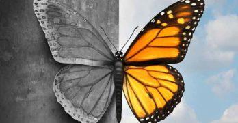 bipolarismo - disturbo bipolare