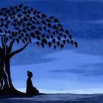 Mindfulness e psicosi