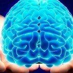La La Land nel cervello