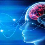 neurofeedback dinamico non lineare