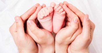 procreazione assistita rivelazione donatore