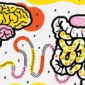 Psicobiotica: intestino e salute mentale