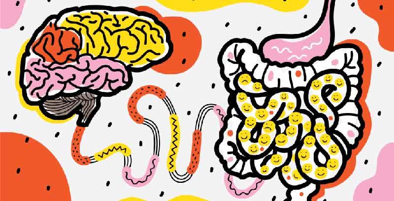 psicobiotico intestino e salute mentale